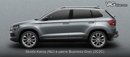 SKODA-KAROQ-Business Grey.jpg