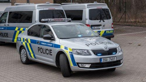 4234886-policie.jpg